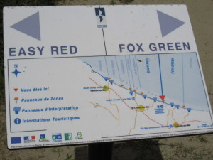 Easy Red | Fox Green sectors